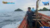 Luật Rừng: Kota Manado Tập 250