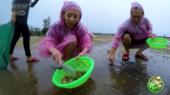 Việt Nam Tươi Đẹp Tập 90 : Những món lề đường tại Phú Quốc