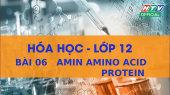 Kết Nối Giờ Thứ 6 - Môn Hóa Lớp 12 Bài 06 : Amin Amino Acid Protein