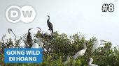 Đi Hoang Tập 08 : Mauretania - Diawling National Park