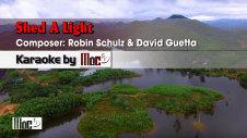 Shed A Light - Robin Schulz ft David Guetta & Cheat Codes