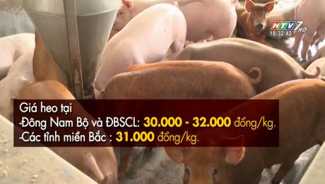 Xem Clip Giá Thịt Heo Tiếp Tục Giảm Mạnh HD Online.