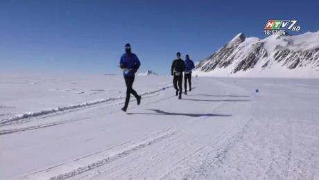 Cuộc Đua Marathon Chinh Phục Nam Cực