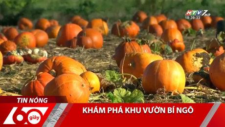 Xem Clip Khám Phá Khu Vườn Bí Ngô HD Online.