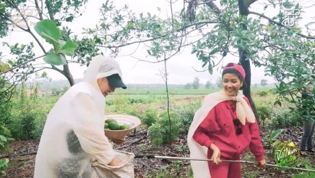 Xem Show TRUYỀN HÌNH THỰC TẾ Việt Nam Tươi Đẹp Tập 96 : H'Hen Niê vừa nấu vừa thuyết minh đặc sản miền núi HD Online.
