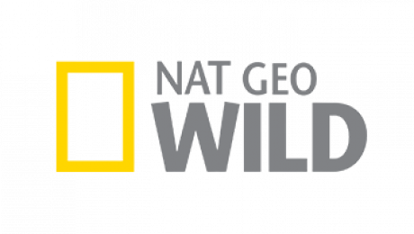 Xem Nat Geo Wild Online.