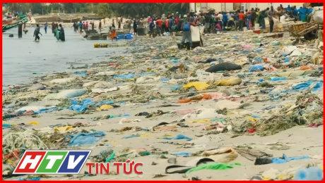 WHO : Hạt Vi Nhựa Dường Như Không Gây Rủi Ro Cho Sức Khỏe