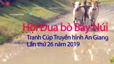 Trailer Đua Bò Bảy Núi An Giang 2019