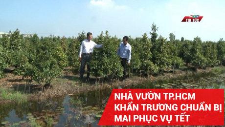 Xem Clip Nhà Vườn Tp.Hcm Khẩn Trương Chuẩn Bị Mai Phục Vụ Tết HD Online.