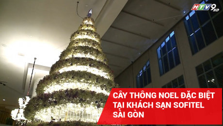 Cây Thông Noel Đặc Biệt Tại Khách Sạn Sofitel Sài Gòn