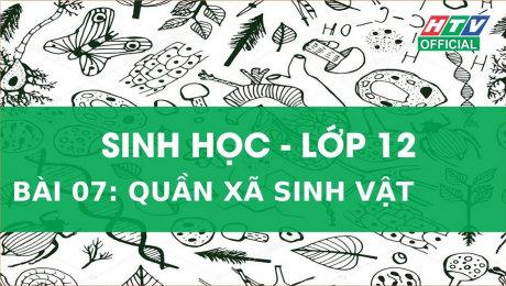 Xem Show VĂN HÓA - GIÁO DỤC Kết Nối Giờ Thứ 6 - Môn Sinh Học Lớp 12 Bài 07 : Quần xã sinh vật HD Online.