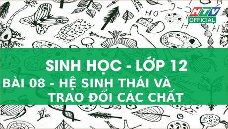 Xem Show VĂN HÓA - GIÁO DỤC Kết Nối Giờ Thứ 6 - Môn Sinh Học Lớp 12 Bài 08 : Hệ Sinh Thái Và Trao Đổi Các Chất HD Online.