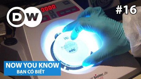 Xem Show TRUYỀN HÌNH THỰC TẾ Bạn Có Biết Tập 16 : Combating Bacteria! HD Online.
