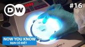 Bạn Có Biết Tập 16 : Combating Bacteria!