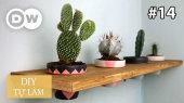 Tự Làm Tập 14 : Potted Plant Shelf