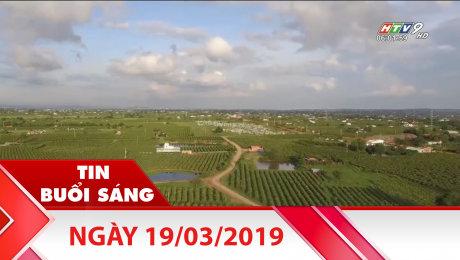 Xem Clip Bản Tin Buổi Sáng 19/03/2019 HD Online.