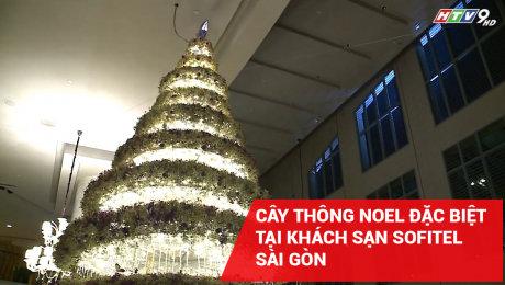 Xem Clip Cây Thông Noel Đặc Biệt Tại Khách Sạn Sofitel Sài Gòn HD Online.