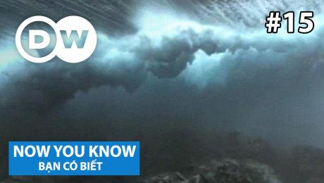 Xem Show TRUYỀN HÌNH THỰC TẾ Bạn Có Biết Tập 15 : Where does the water on earth come from? HD Online.