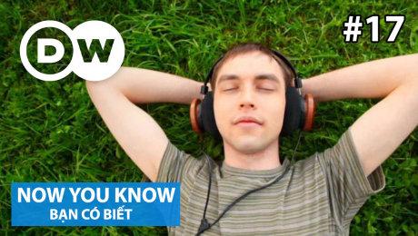 Xem Show TRUYỀN HÌNH THỰC TẾ Bạn Có Biết Tập 17 : Why do we like music? HD Online.
