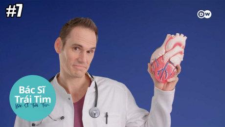Xem Show TRUYỀN HÌNH THỰC TẾ Bác Sĩ Trái Tim Tập 07 : Treatment for a Healthy Heart - Is Medication Helpful or Harmful? HD Online.